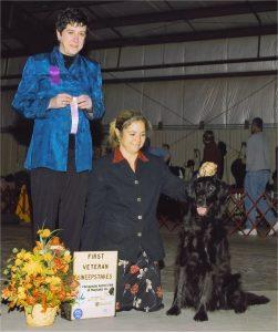 2004-1122-Fall-1stVS