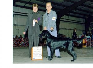 First place in my 6 - 9 mo puppy class, 11/08.